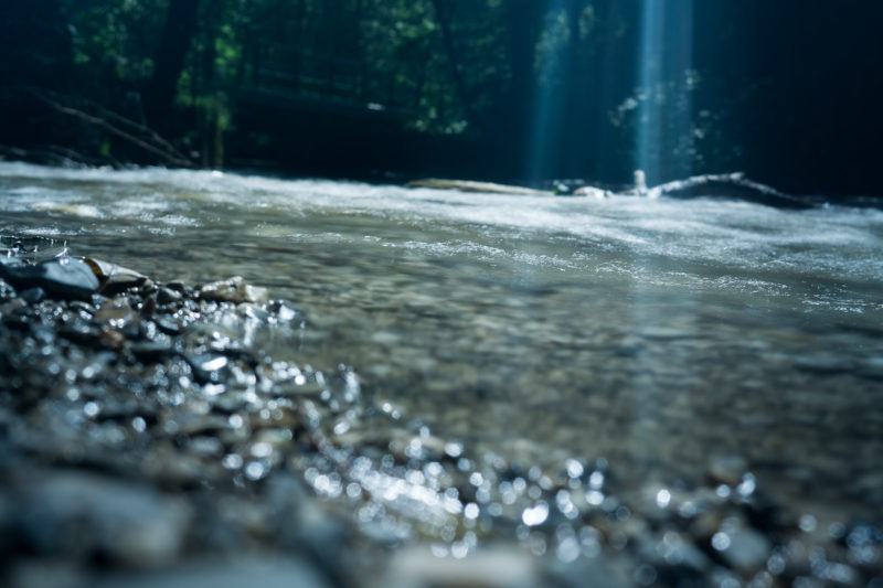 Prioritising protection of the SA's water sources – SANBWA